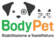 Body Pet